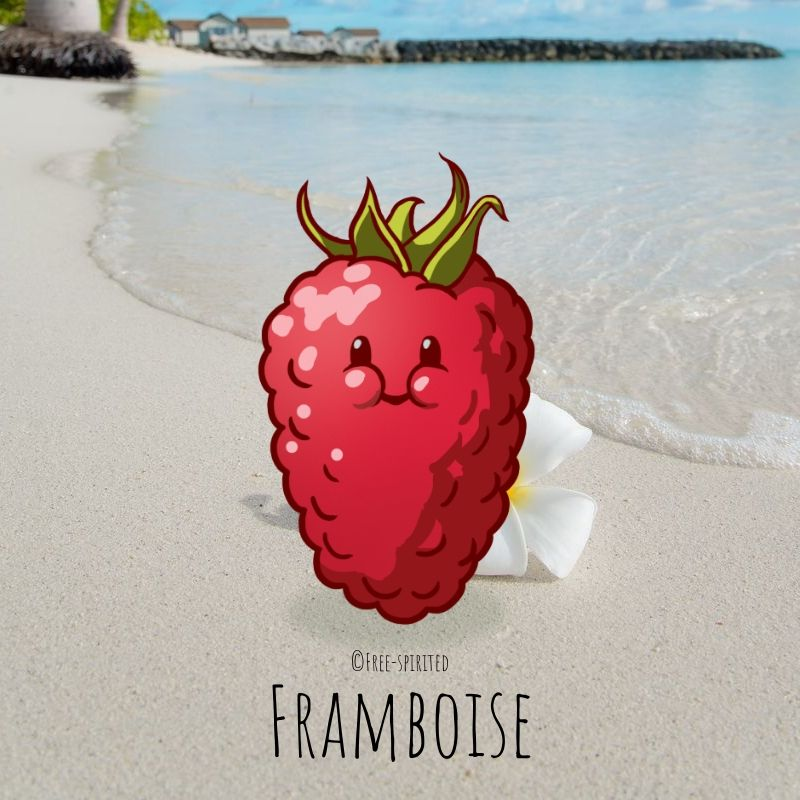 Free-spirited-fruits-légumes-saison-aout-Framboise