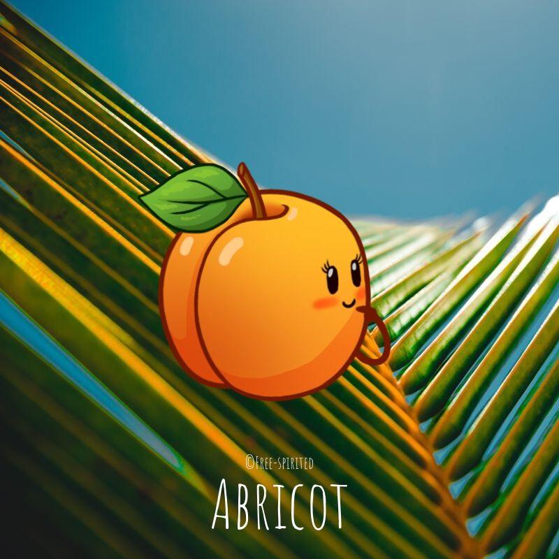 Free-spirited-fruits-légumes-saison-juillet-Abricot