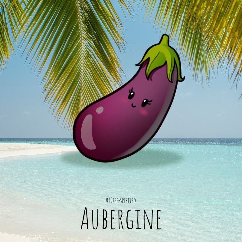 Free-spirited-fruits-légumes-saison-juillet-Aubergine