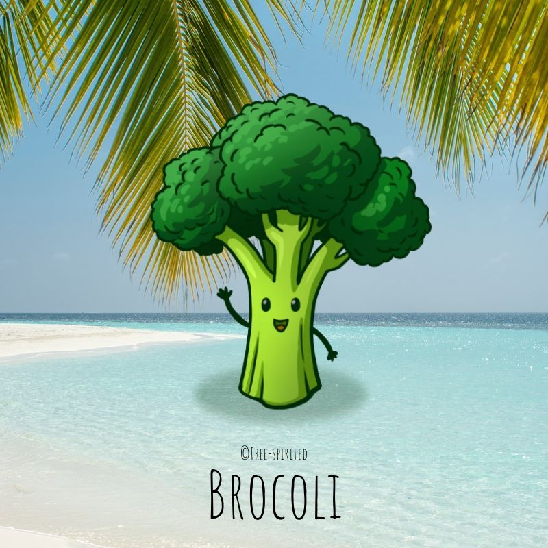 Free-spirited-fruits-légumes-saison-juillet-Brocoli