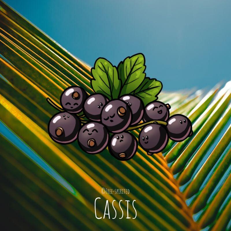Free-spirited-fruits-légumes-saison-juillet-Cassis