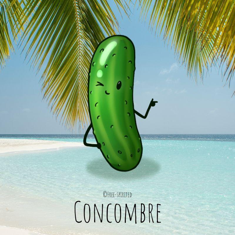 Free-spirited-fruits-légumes-saison-juillet-Concombre