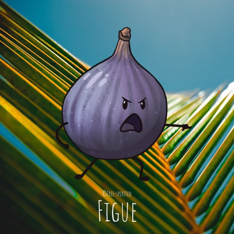 Free-spirited-fruits-légumes-saison-juillet-Figue