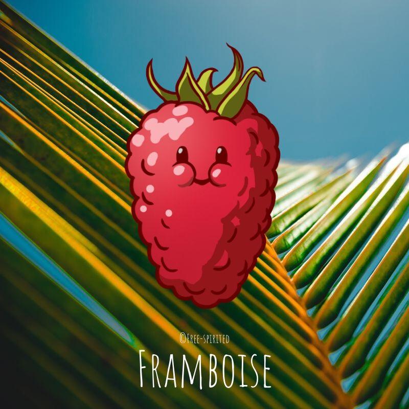 Free-spirited-fruits-légumes-saison-juillet-Framboise