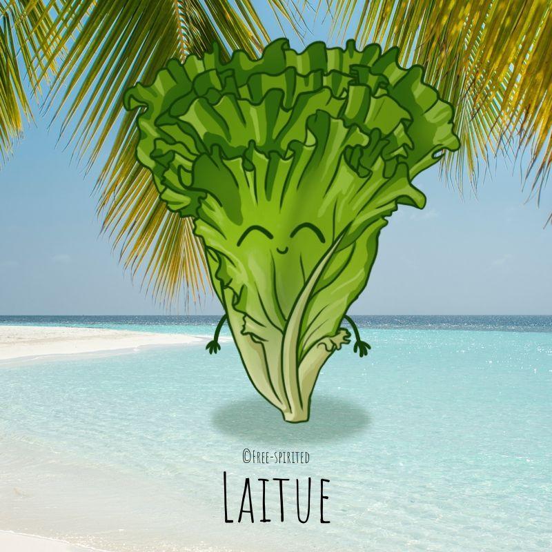 Free-spirited-fruits-légumes-saison-juillet-Laitue