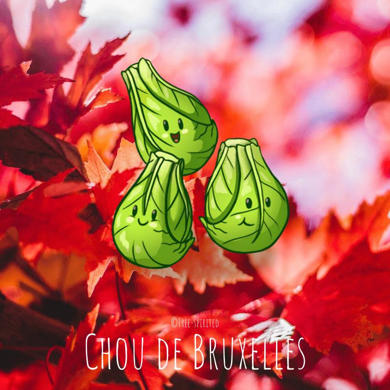 Free-spirited-fruits-légumes-saison-bio-responsable-écologie-septembre-Chou-de-Bruxelles