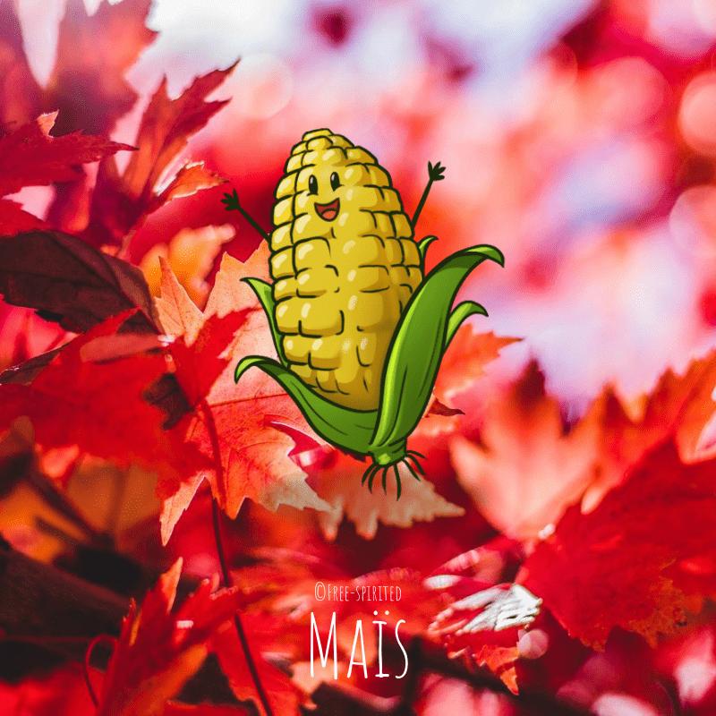 Free-spirited-fruits-légumes-saison-bio-responsable-écologie-septembre-Maïs