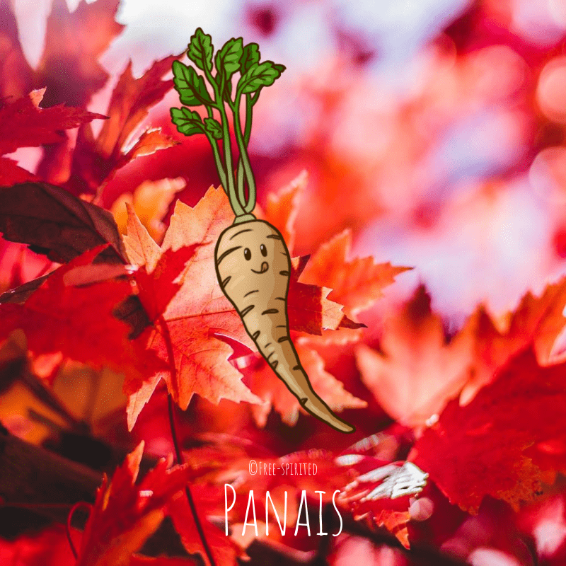 Free-spirited-fruits-légumes-saison-bio-responsable-écologie-septembre-Panais