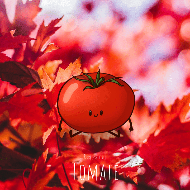 Free-spirited-fruits-légumes-saison-bio-responsable-écologie-septembre-Tomate