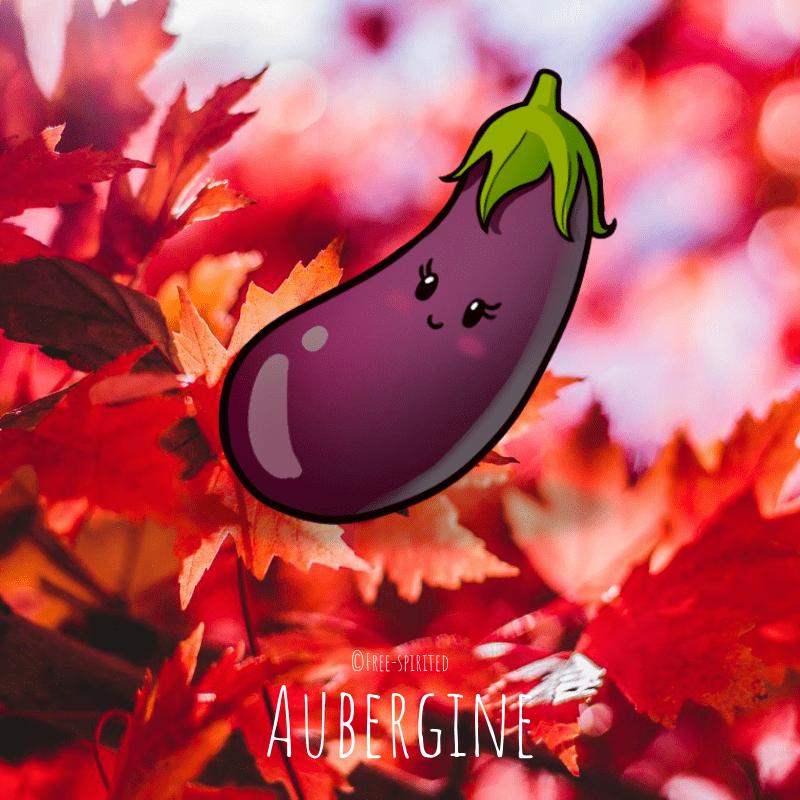 Free-spirited-fruits-légumes-saison-bio-responsable-écologie-septembre-aubergine