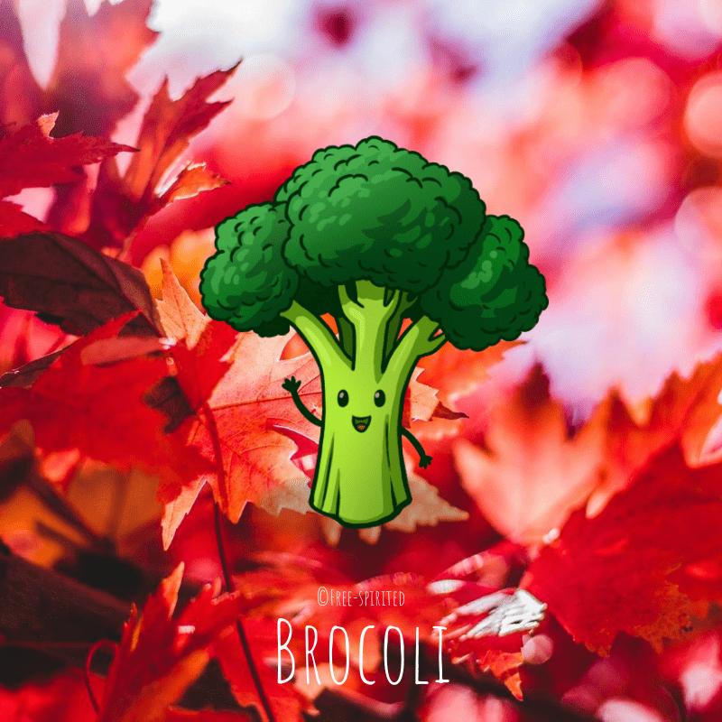 Free-spirited-fruits-légumes-saison-bio-responsable-écologie-septembre-brocoli