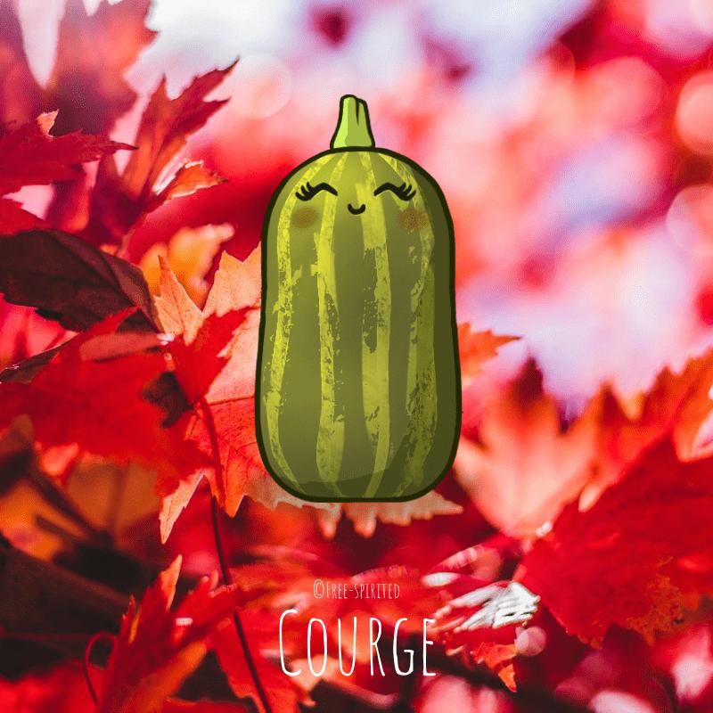 Free-spirited-fruits-légumes-saison-bio-responsable-écologie-septembre-courge
