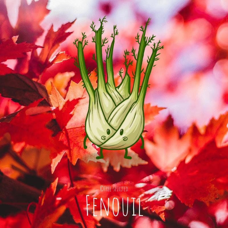 Free-spirited-fruits-légumes-saison-bio-responsable-écologie-septembre-fenouille