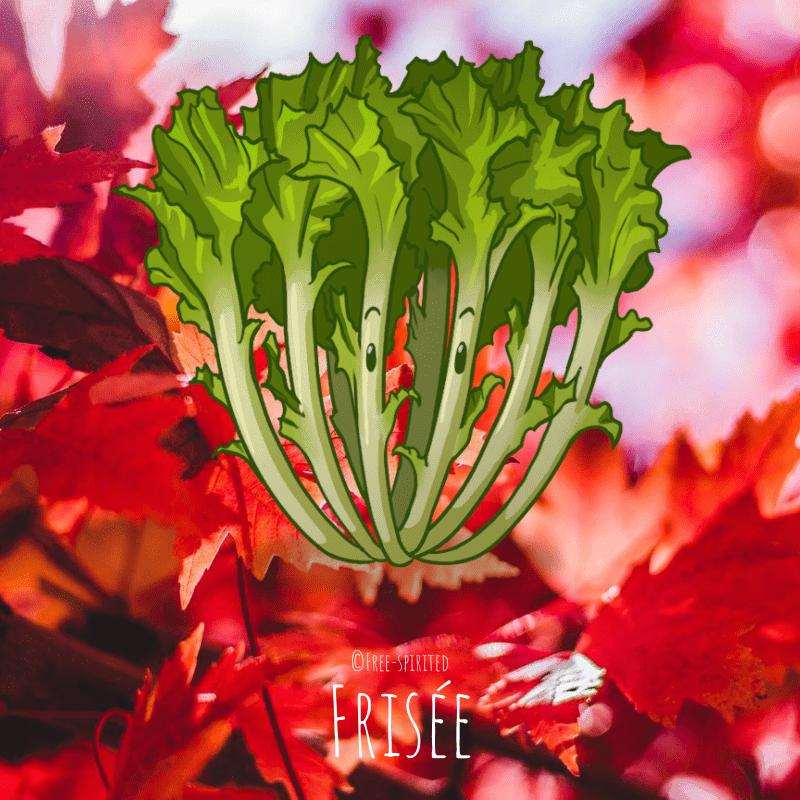 Free-spirited-fruits-légumes-saison-bio-responsable-écologie-septembre-frisee