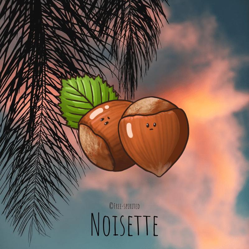 Free-spirited-fruits-légumes-saison-bio-responsable-écologie-septembre-noisette