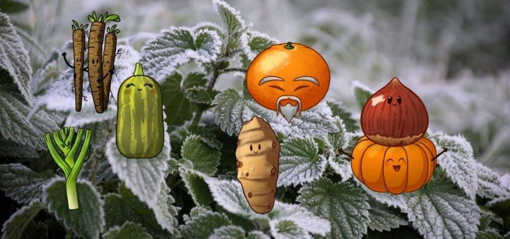 Free-spirited-fruits-légumes-saison-bio-responsable-ecologie-novembre