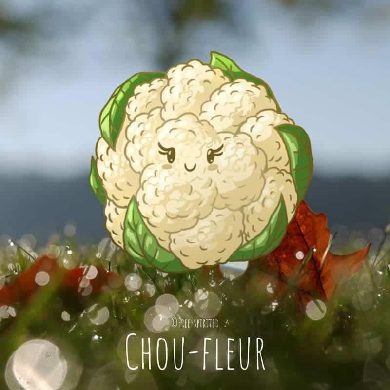 Free-spirited-fruits-légumes-saison-bio-responsable-écologie-novembre-Chou-fleur