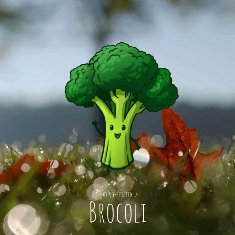 Free-spirited-fruits-légumes-saison-bio-responsable-écologie-novembre-brocoli