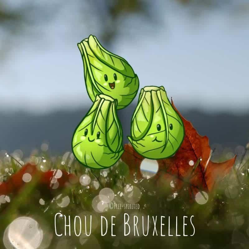 Free-spirited-fruits-légumes-saison-bio-responsable-écologie-novembre-chou-de-bruxelles