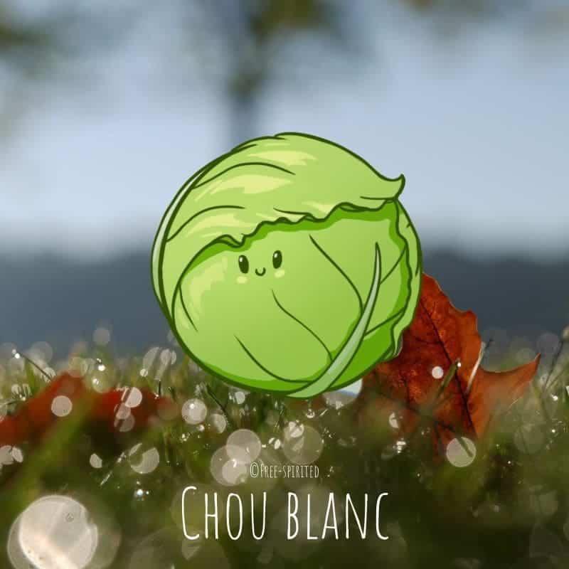 Free-spirited-fruits-légumes-saison-bio-responsable-écologie-novembre-chou