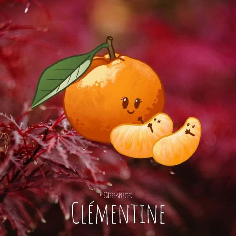 Free-spirited-fruits-légumes-saison-bio-responsable-écologie-novembre-clementine