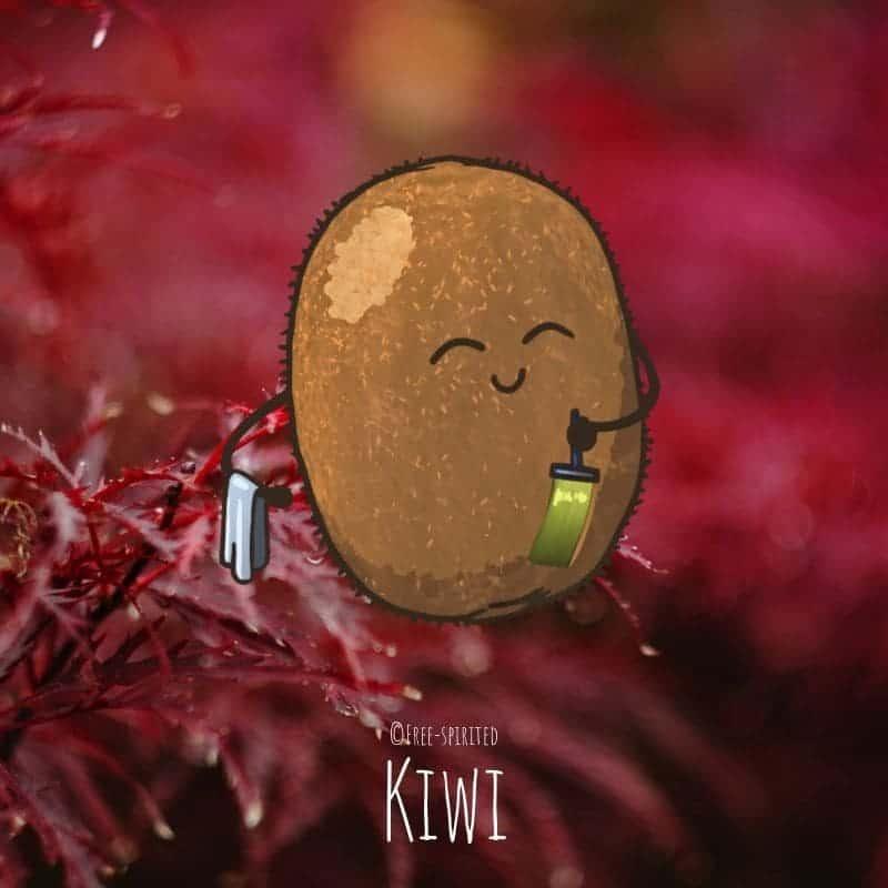 Free-spirited-fruits-légumes-saison-bio-responsable-écologie-novembre-kiwi