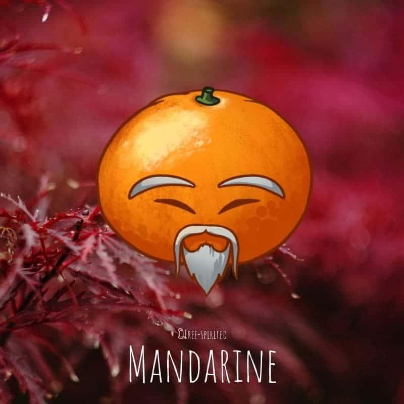 Free-spirited-fruits-légumes-saison-bio-responsable-écologie-novembre-mandarine