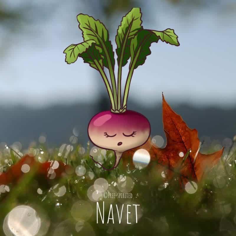 Free-spirited-fruits-légumes-saison-bio-responsable-écologie-novembre-navet