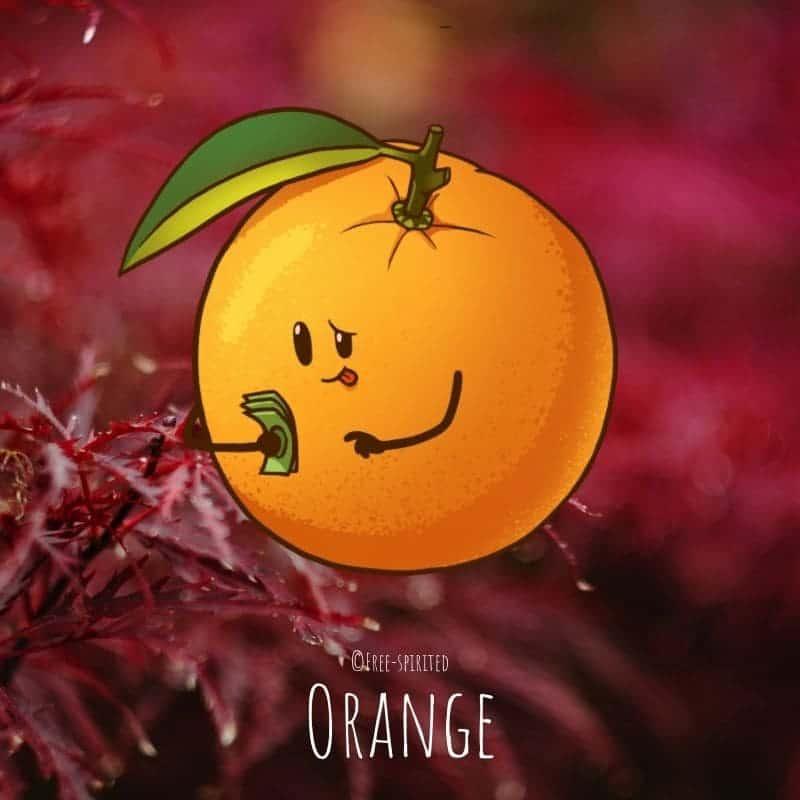 Free-spirited-fruits-légumes-saison-bio-responsable-écologie-novembre-orange