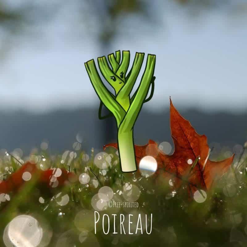 Free-spirited-fruits-légumes-saison-bio-responsable-écologie-novembre-poireau